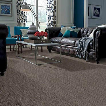 Anso® Nylon Carpet in Hyattsville, MD